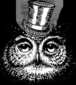 dizzlemagic.com Diz Owl Logo